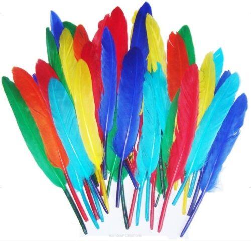 Duck piquants fly tying feathers Artisanat ou fly tying Choix De Couleurs