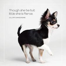 Dog Studio Greeting Card - SHE IS FIERCE (Chihuahua) - #DS-C-FB-1984-182