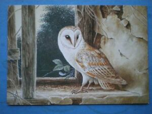 POSTCARD ANIMALS BARN OWL - Tadley, United Kingdom - Full Refund less postage if not 100% satified Most purchases from business sellers are protected by the Consumer Contract Regulations 2013 which give you the right to cancel the purchase within 14 days after the day you receive th - Tadley, United Kingdom