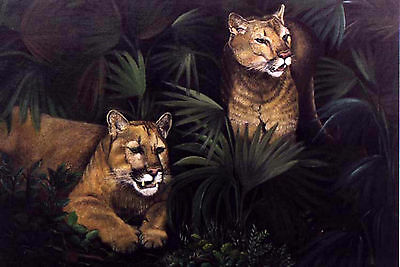 Florida Panthers Original Oil Painting On Canvas Board Ooak 22 X 28 Inches 1997 Art