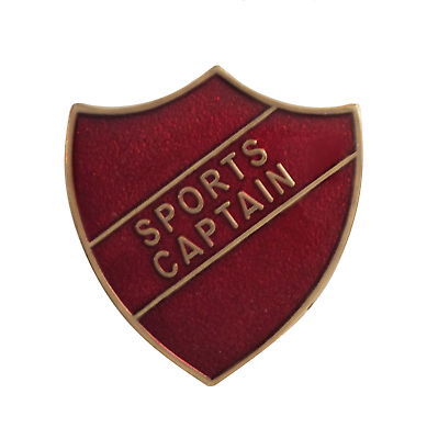 VICE CAPTAIN SCHOOL ENAMEL PIN BADGE RED BRAND NEW