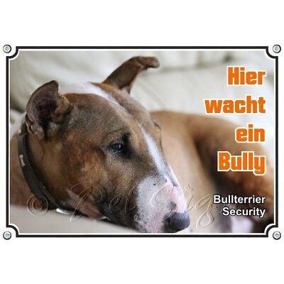 Bescheiden Hundeschild - Bullterrier - Rostfreies Metallschild Uv-beständig Und Haltbar GroßE Auswahl;