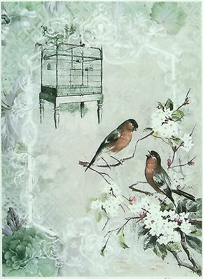 Rice Paper for Decoupage, Scrapbook Sheet, Craft Romantic Bird Cages