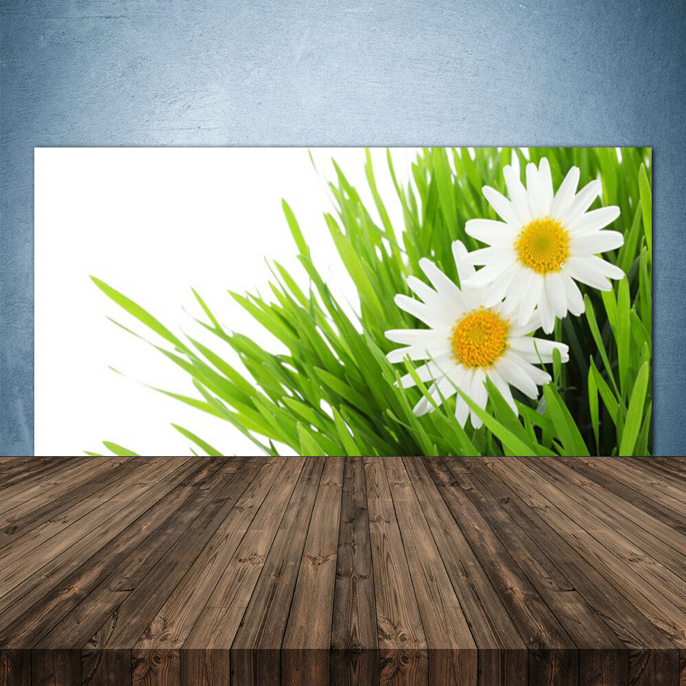 Crédence de cuisine en verre Panneau 140x70 Floral Marguerite Herbe