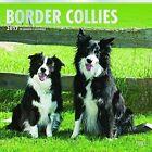 Border Collies 2017 Wall Calendar 9781465055538