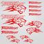 Thundercat-stickers-decal-snowmobile-arctic-cat-snowboard-quad-tuning-helmet miniature 5