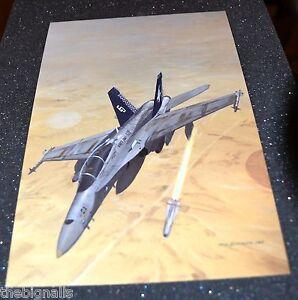 Iraqi-War-Aircraft-USMC-F-A-18-Hornet-Large-Postcard