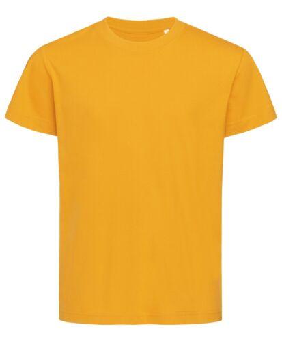 Plain Organic Cotton Kids Childrens Childs Boys Girls Tee T-Shirt Tshirt