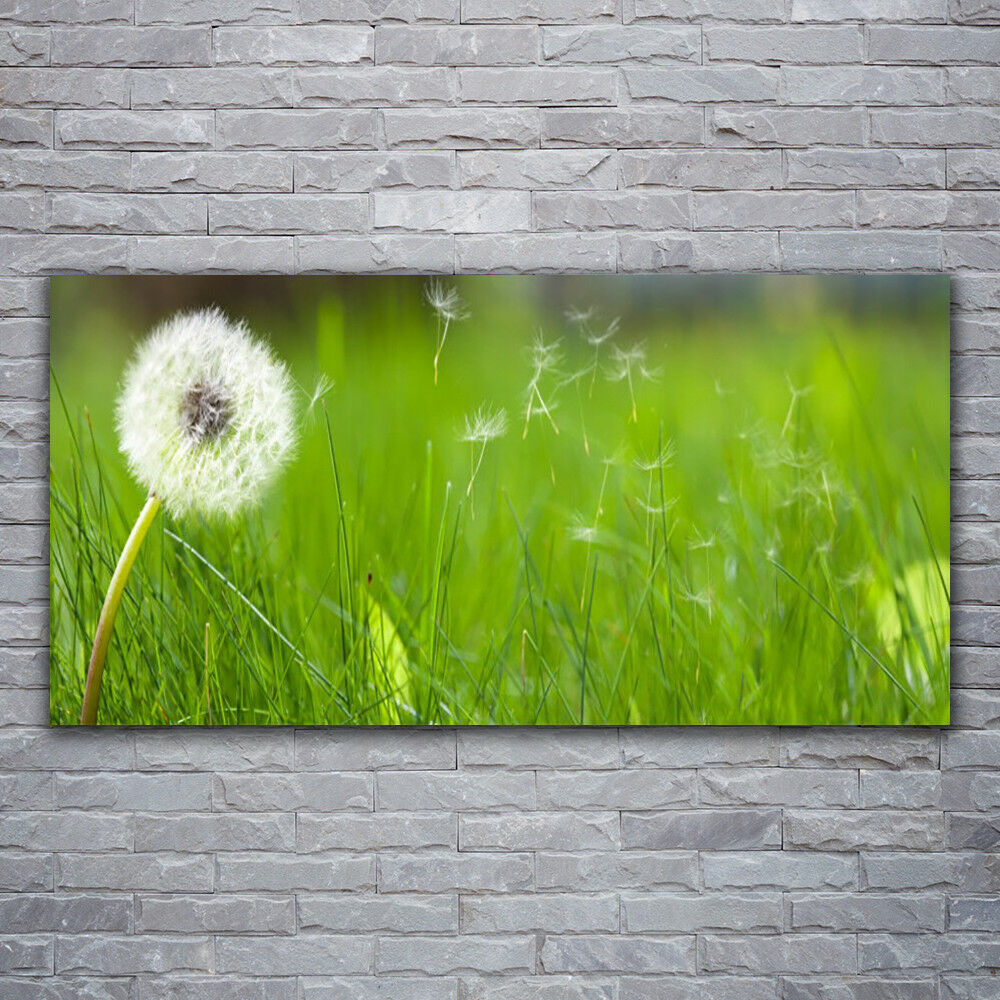 Impression sur verre Wall Art 120x60 Photo Image Pustebleume Herbe Floral