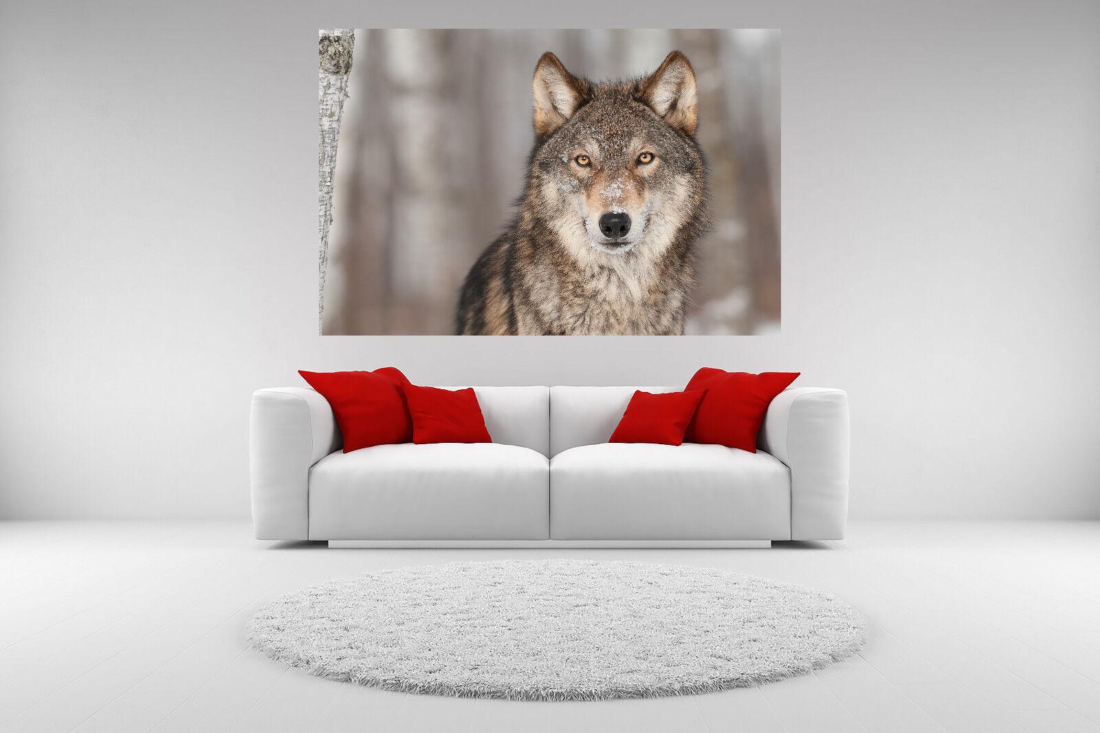 grau Wolf Portrait Canvas Picture Giclee Print Unframed Home Decor Wall Art