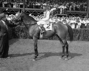 1937-Champion-Racehorse-SEABISCUIT-Glossy-8x10-Photo-Yonkers-Handicap-Winner