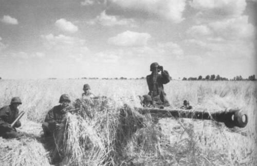 WWII Photo German Pak 40  7.5cm Gun Eastern Front WW2 B/&W World War Two 2168