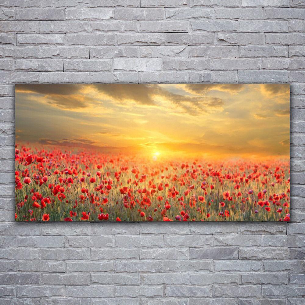 Wandbilder Glasbilder Druck auf Glas 120x60 Sonne Wiese MohnBlaumen Natur