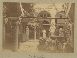 Algerie-Alger-Le-Musee-Vintage-albumen-print-Tirage-albumine