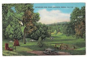 Illinois Beautiful Antique Linen Postcard of Detweiler Park Picnic Grounds in Peoria