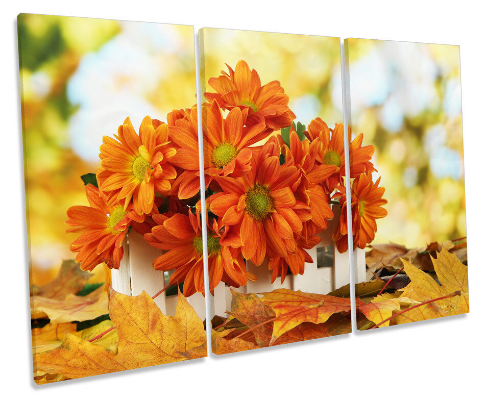 Autumn Floral Flowers TREBLE CANVAS WALL ART Box Framed Picture