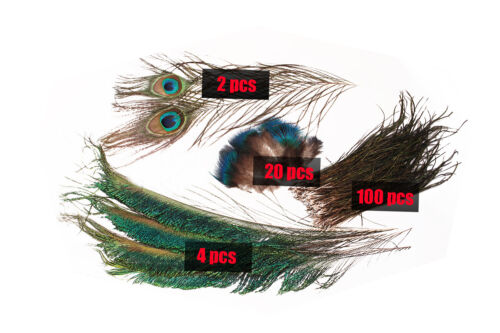 Peacock Feather Set Sword Tail Herl Quills Nymph Wet Classic Fly Tying Materials