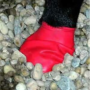 Pawz-Disposable-Reusable-Dog-Boots-Wound-Recovery-Durable-All-Weather-12-Pack