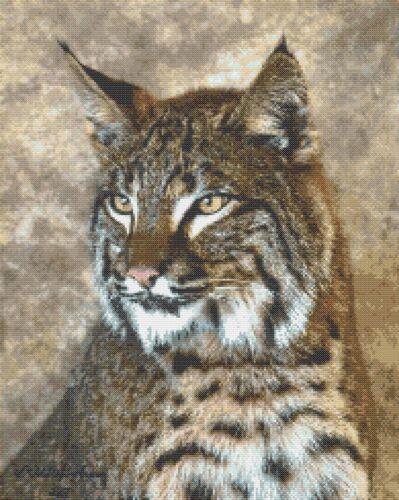 Lynx Faccia-cross stitch chart