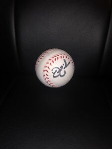 NICK-SWISHER-AUTOGRAPHED-BASEBALL-COLLECTIBLE-FOAM-BALL-WORLD-SERIES-YANKEES-039-09