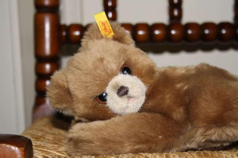 Steiff Steiff Steiff Floppy Bear 082108 2003 20 cm 7ecd19