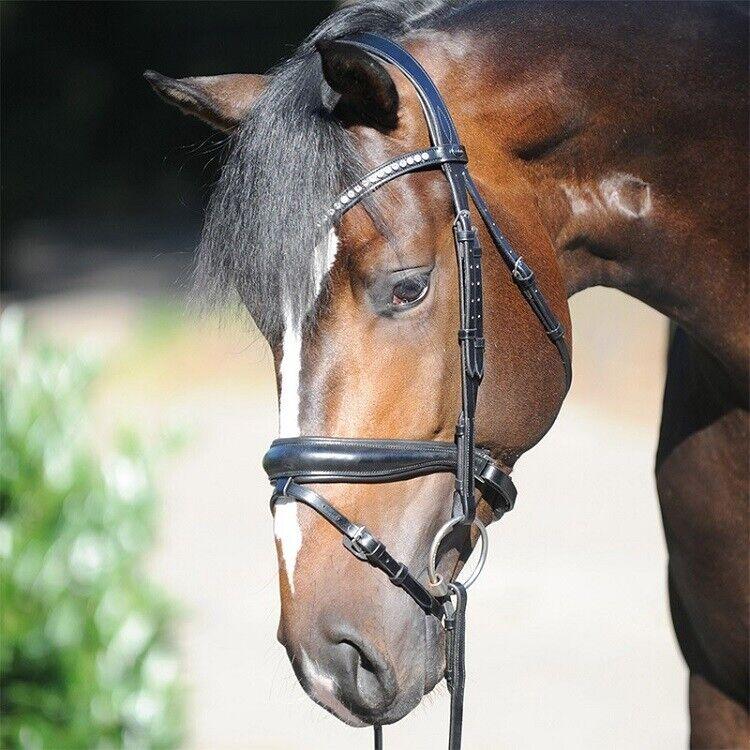 KAVALKADE Dressage bridle  Charlotte  Patent crank noseband- Cob Size