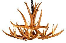 Antler Chandelier Mule Deer 6 antler 6 lights