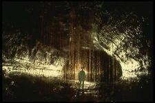 194094 Hawaiian Lava Tube With Ohia Tree Roots A4 Photo Print