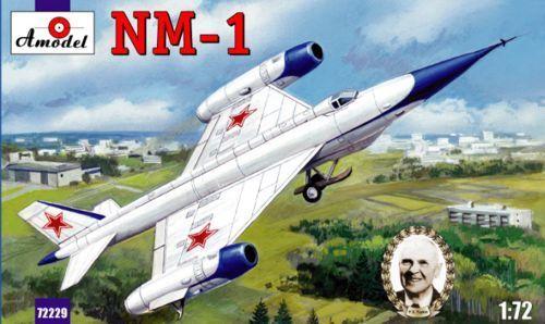Amodel 1 72 Tsybin Nm-1
