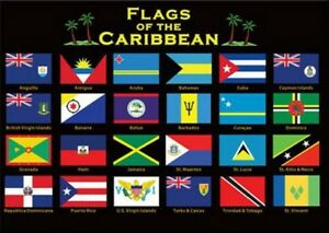 CARIBBEAN-FLAGS-FRIDGE-COLLECTOR-039-S-SOUVENIR-MAGNET-2-5-034-X-3-5-034