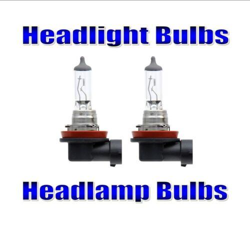 Headlight Bulbs Headlamp Bulbs For Toyota Prius Plus 2011-2017