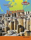 Igneous Rock by Rebecca Faulkner (Paperback, 2016)