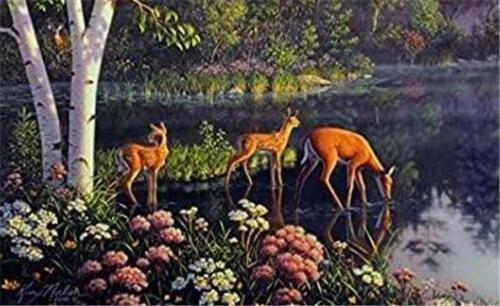 Kim Norlien New Beginnings Deer 300 pc Bagged Boxless Jigsaw Puzzle NO BOX