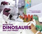 What the Dinosaurs Did Last Night: A Very Messy Adventure by Refe Tuma, Susan Tuma (Hardback, 2014)