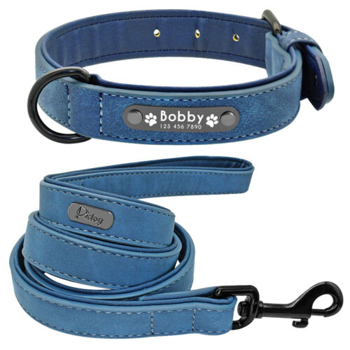 Premium Leather Padded Personalized Dog Collar and Matching Leash Set XS S L XL