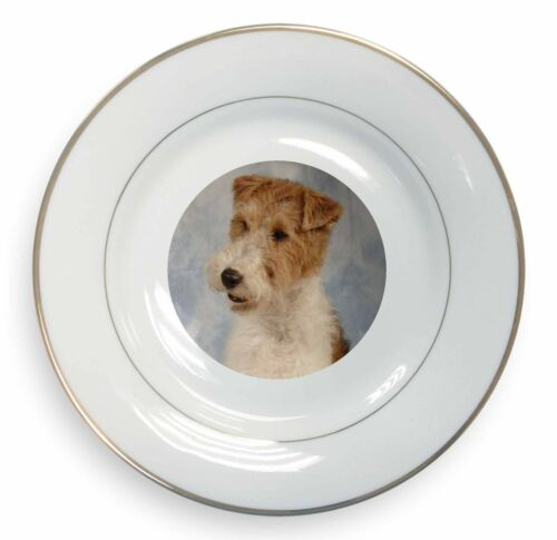 Fox Terrier Dog Gold Rim Plate in Gift Box Christmas Present, ADWHT1PL