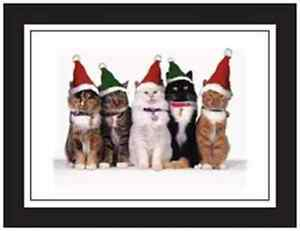 20-CHRISTMAS-Holiday-Greeting-POSTCARDS-Post-Cards-PRINTED-US-OR-CANADA
