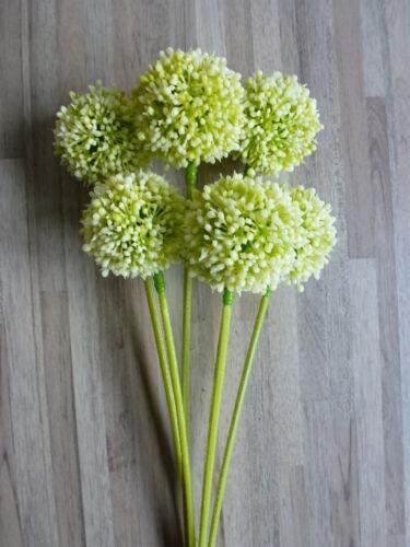 Set Pick Blüte Kunstblume 34 cm creme 301123-60 F16 6 x Allium 6tlg