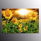 FRAMED Wall Art Canvas Painting Modern Canvas Print Art For Room Decor Sunflower