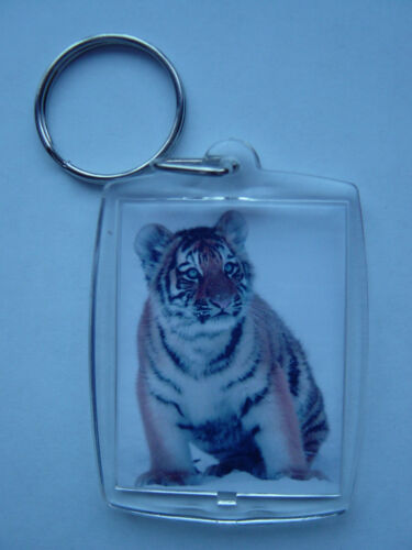 Tigers Big cats Photo Keyring // bag tag clear plastic, leopards etc. Lions