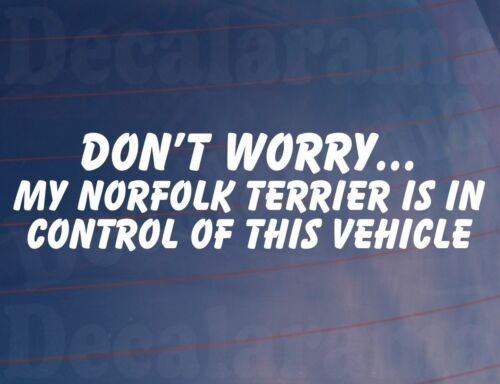 DON/'T WORRY MY NORFOLK TERRIER IS IN CONTROL OF THIS VEHICLE Car//Van Dog Sticker