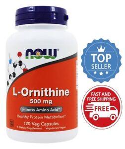 Now-Foods-L-Ornithine-500-mg-120-Veg-Capsules-Fitness-Amino-Acid