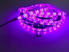 Pool Outdoor WaterProof LED Tape Lighting Strip SMD 3528 300 LEDs per 5M PURPLE