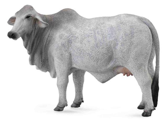 Collecta 88580 Brahman vaca 14 cm de animales granja