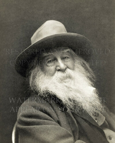 11x14 or request 12x15 photo print of Walt Whitman 1887 portrait by George C Cox