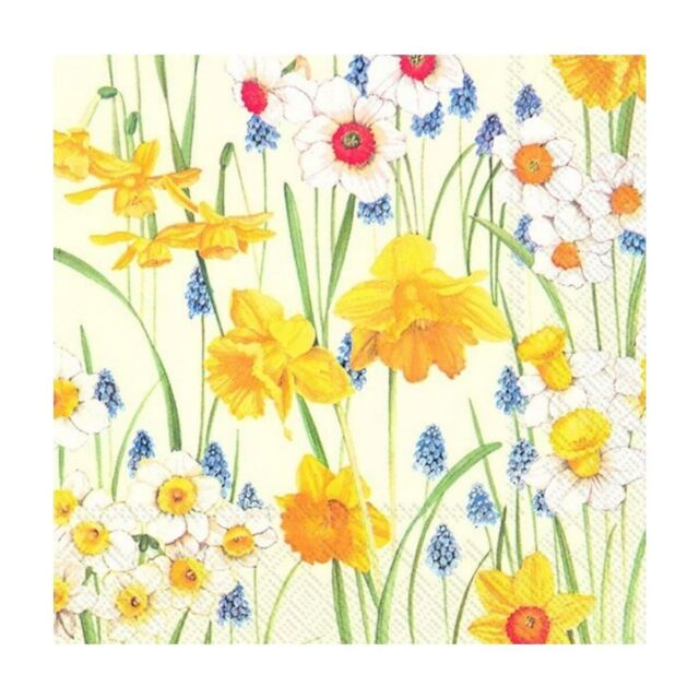 3-ply 4 Individual Napkins for Craft /& Napkin Art 4 Paper Napkins for Decoupage 33 x 33cm Narcissus