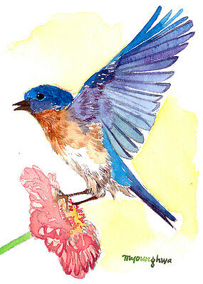 Art print of watercolor Bluebird Gift for her ACEO Limited Edition A glance