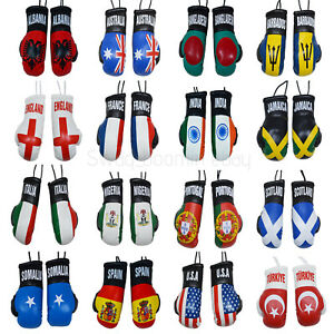 SOUTH AFRICA COUNTRY FLAG MINI BOXING GLOVES . NEW