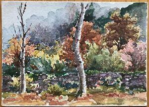 Courageux Peinture Aquarelle Originale La Vallée Villard 1912.arbres Forêt Nature Beau Travail