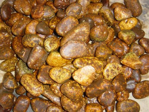 Marmor gerundete Steine terracotta 40-60 mm 25 kg